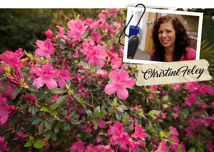 christine-blog-feature